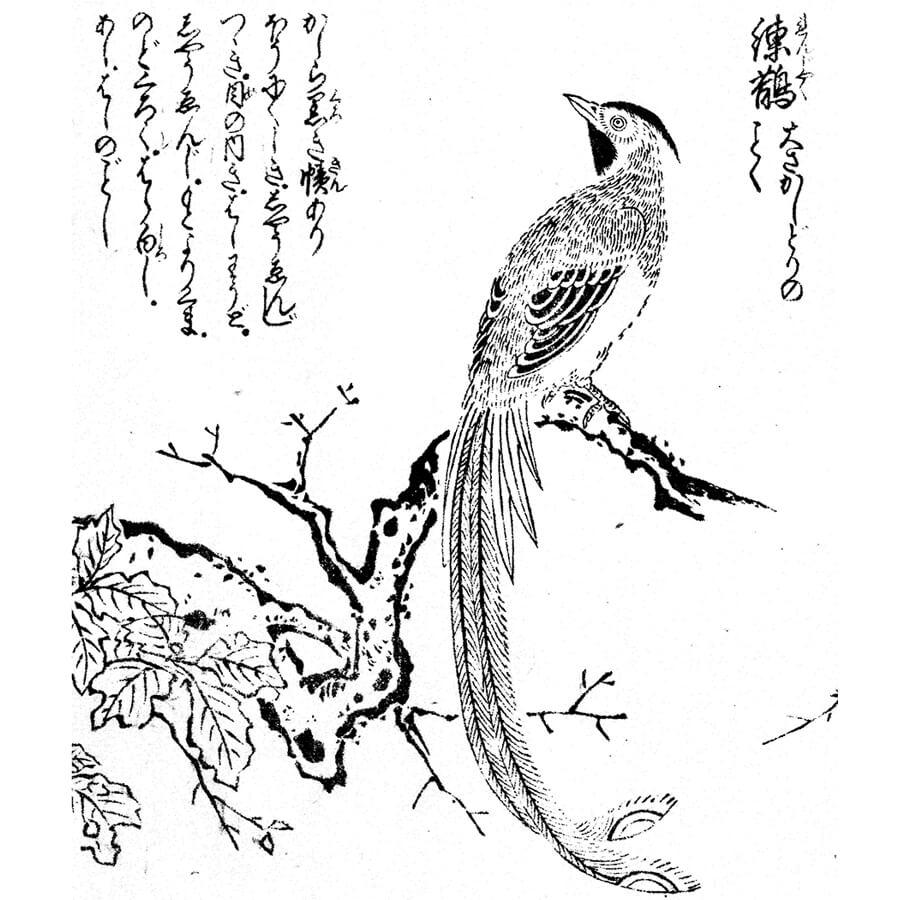 練鵲・橘守国派 - 絵本通宝志(享保14年・1729年)
