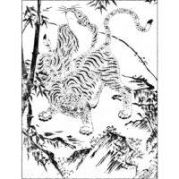 雌の虎 - 絵本通宝志(享保14年・1729年)