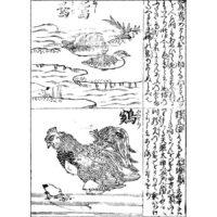 鶏に五徳あり - 絵本忘草(貞享5年・1688年)