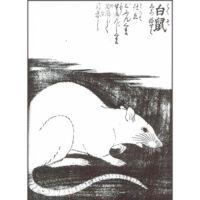 大黒鼠 - 絵本写宝袋(享保5年・1720年)