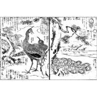 孔雀・九徳 - 絵本写宝袋(享保5年・1720年)
