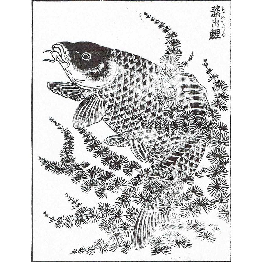 藻出鯉 - 絵本通宝志(享保14年・1729年)