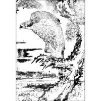 新修鷹経 - 和漢画則(安永3年・1774年)