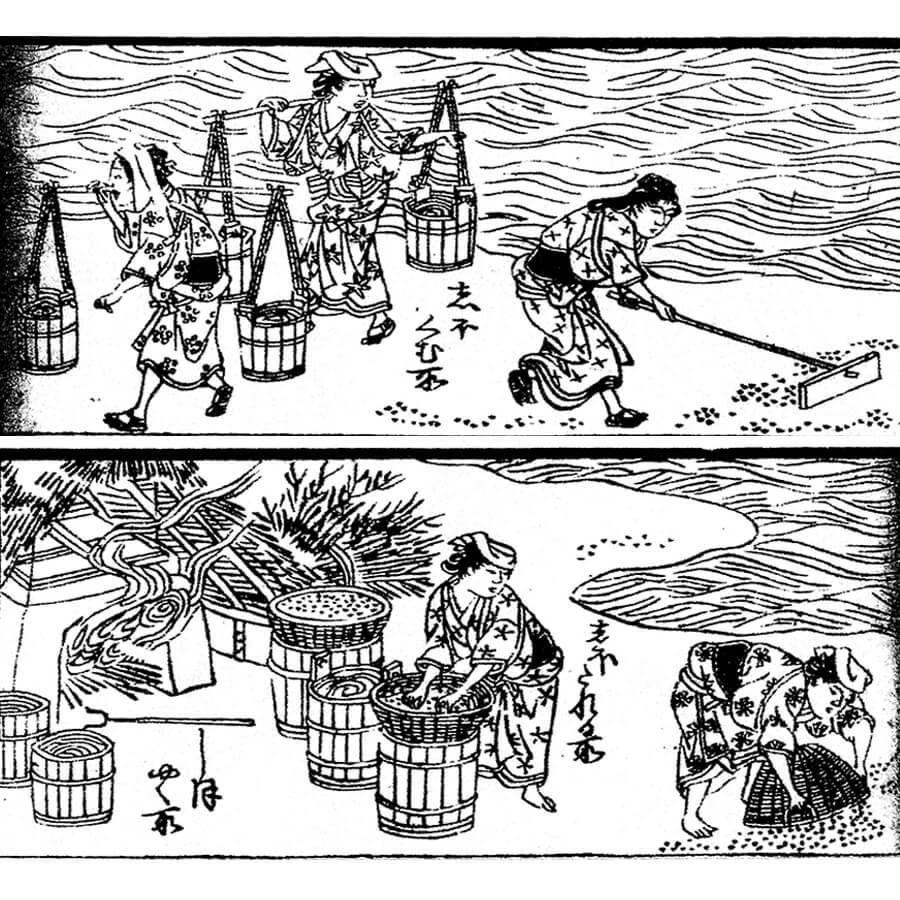 塩屋 - 操百人一首華文庫 (安政2年 ・1855年 )