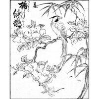 椿に寿帯鳥 - 書名不明(正徳前後・1710年前後)